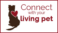 Connect with Your Living Pet