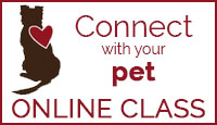Connect with Your Pet Online Class