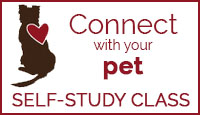 Connect with Your Pet Self-Study Class